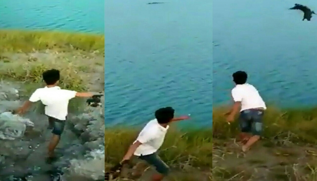 Screenshoot video viral pemuda lempar anjing ke kolong buaya. (dok/wb)